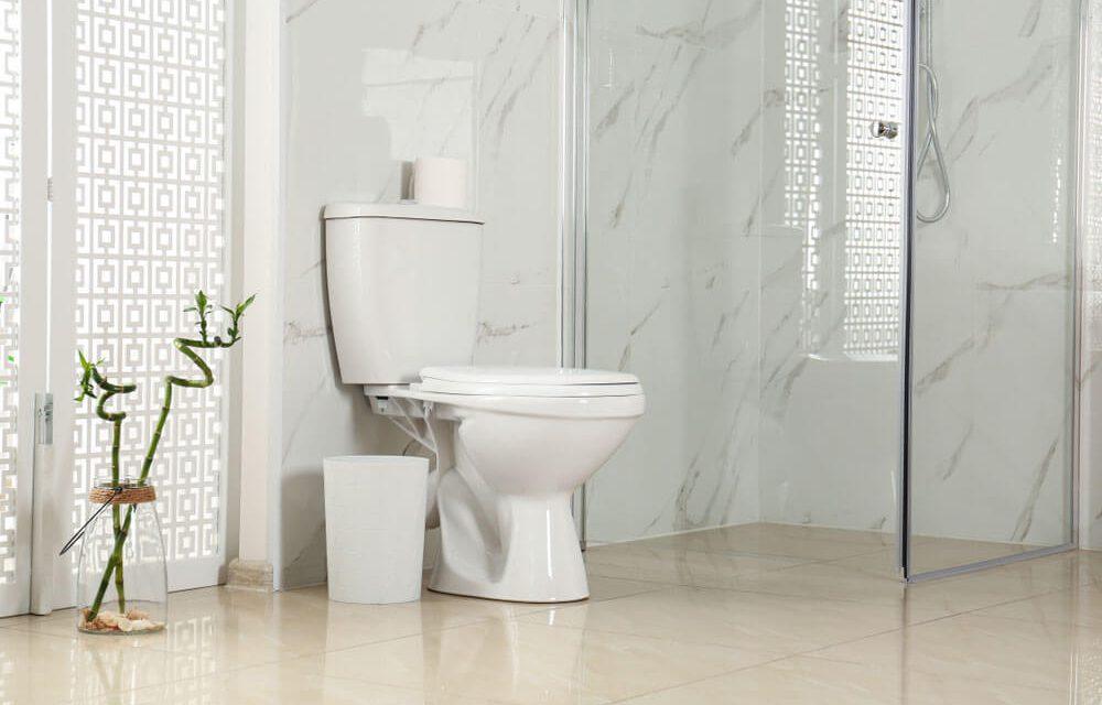 https://www.superiorplumbinganddrains.com/wp-content/uploads/2021/06/superior-plumbing-and-drains-charlotte-plumber-new-toilet-1000x640.jpg